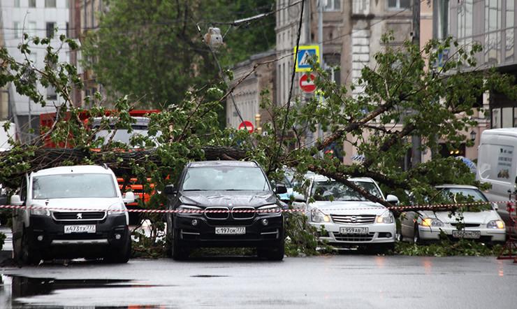Неменее 260 клиентов «Россгосстраха» позвонили вкомпанию после урагана вмосковском регионе