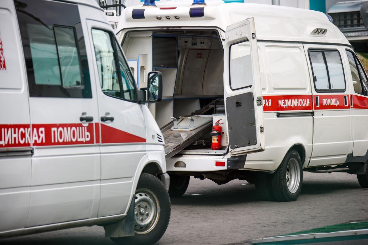 В Подмосковье ротвейлер напал на двоих детей